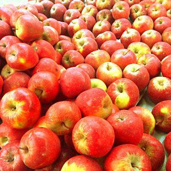 appels op streekmarkt Toldijk
