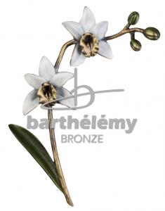 Grafdecoratie Orchidee in wit groen brons