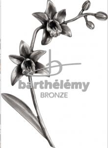Orchidee zilverbrons als grafdecoratie